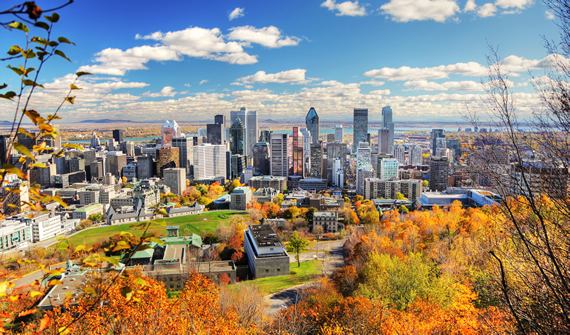 Cityscape of Montréal, Québec with urban forest displaying fall colours.