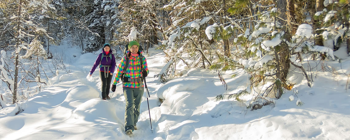 Two women snowshoeing through the forest.