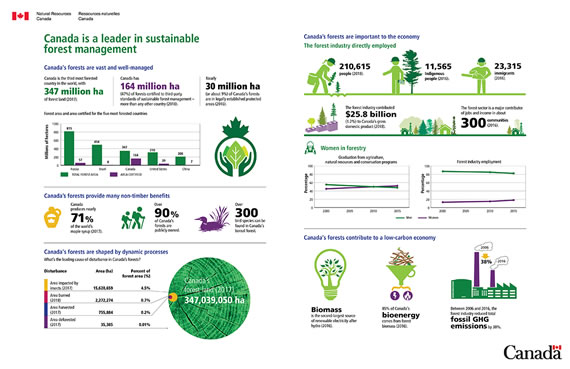 Infographic - Canada is a leader in sustainable forest management, described below.