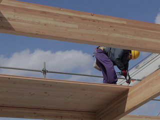 Video describing the benefits of using wood in building construction