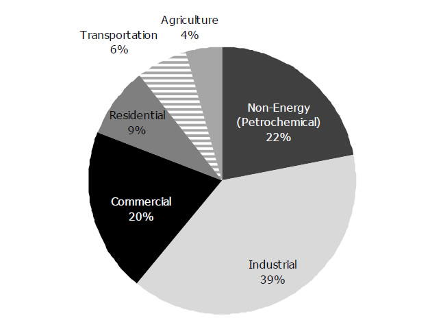 Figure 3.1: Canadian Propane Demand by Sector, 2012