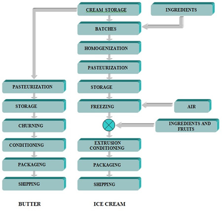 Production of butter and ice cream: main steps in the process