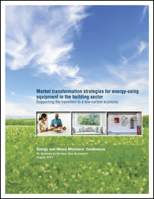 Market transformation strategies for energy-using equipment in the building sector: Supporting the transition to a low-carbon economy