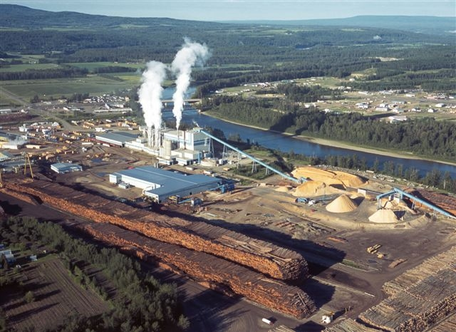 Generating Bioenergy From Pulp Mill Waste Natural